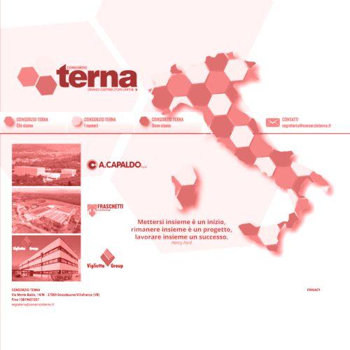 Il nuovo sito web di Terna