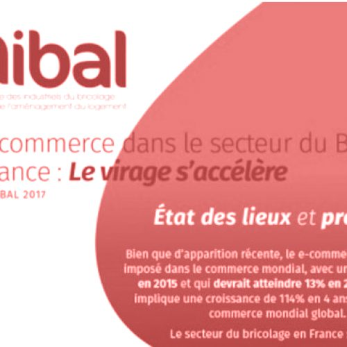 Unibal stima l'e-commerce nel 2020 (In Francia)